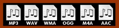 digital format types